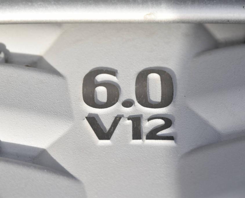 Dsc 0355